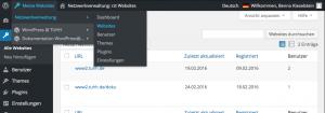 NetzwerkverwaltungWebsites